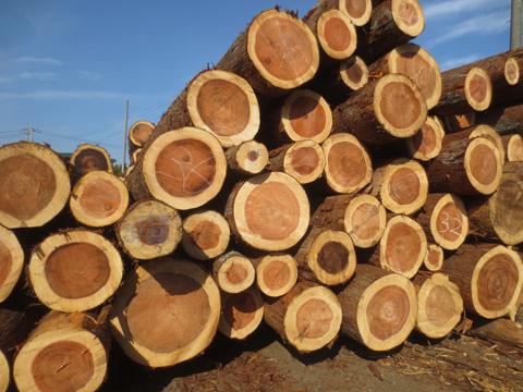 k-wood.jpg