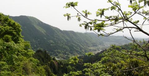kanagawamountain_1cut.jpg